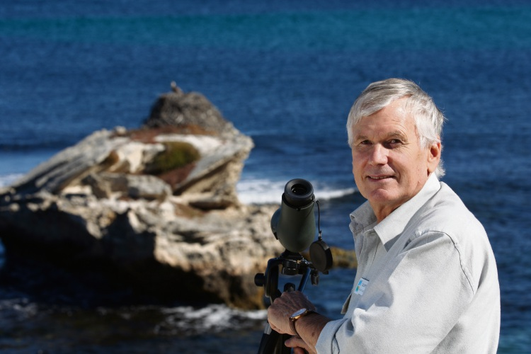 Osprey breeding season has started on Rottnest Island