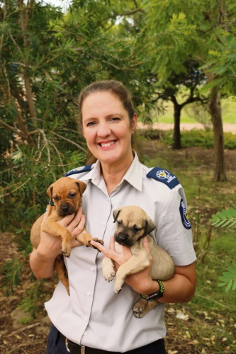 RSPCA WA Chief inspector Amanda Swift.
