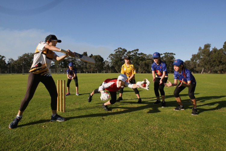 Girls cricket taking off in Midland thanks to Midland Guildford Junior Cricket Association