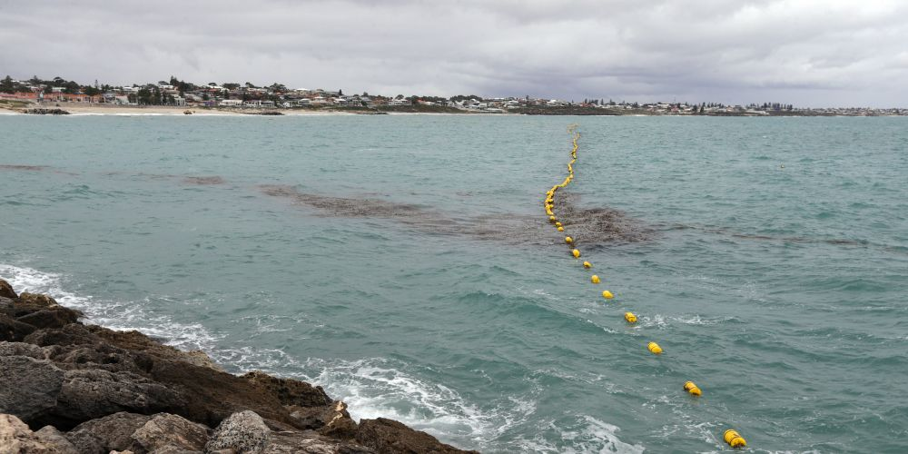The Sorrento Beach enclosure following Wednesday night's storm. Picture; Martin Kennealey