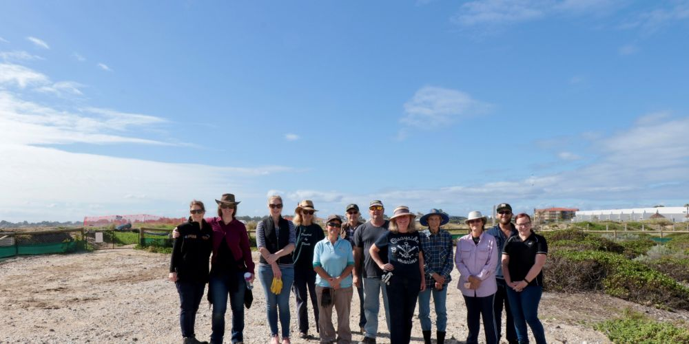 Volunteers at the <i>fairy tern</i> sanctuary.