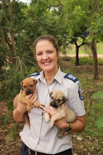 RSPCA WA chief inspector Amanda Swift holds two rescued puppies.