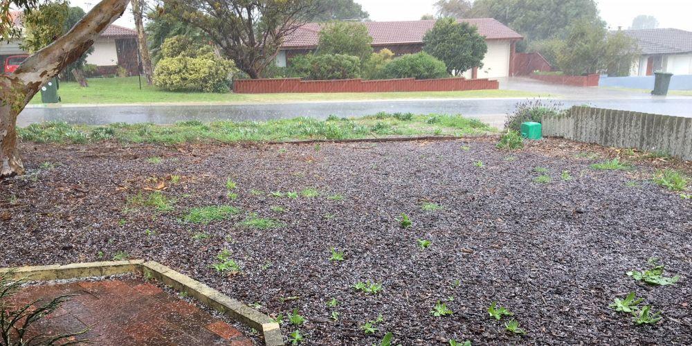Hail at a Heathridge home.