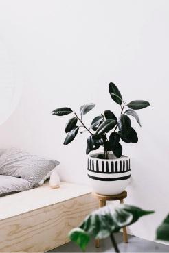 Pop & Scott Mali Pot In Charcoal, Little Leaf Co ($285)