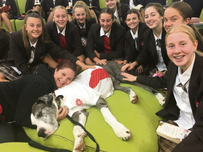 Hercules the Great Dane in the library with Sacred Heart College English students.