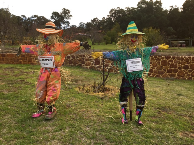 Scarecrows that students from Kalamunda Primary School kindergarten made.