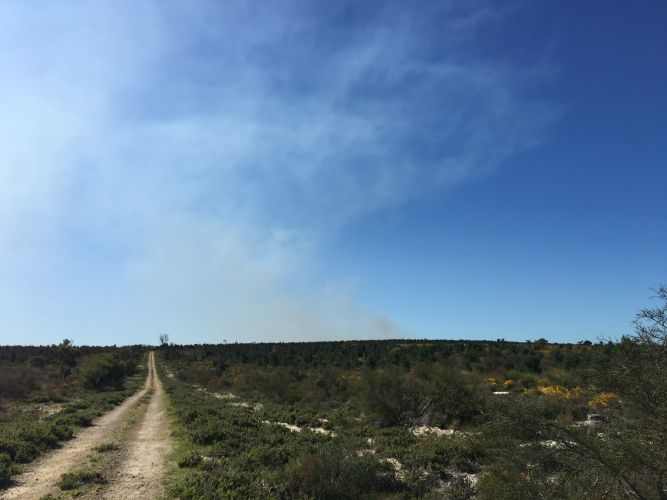 The Parks and Wildlife Service issued a smoke alert for prescribed burns in the northern suburbs.