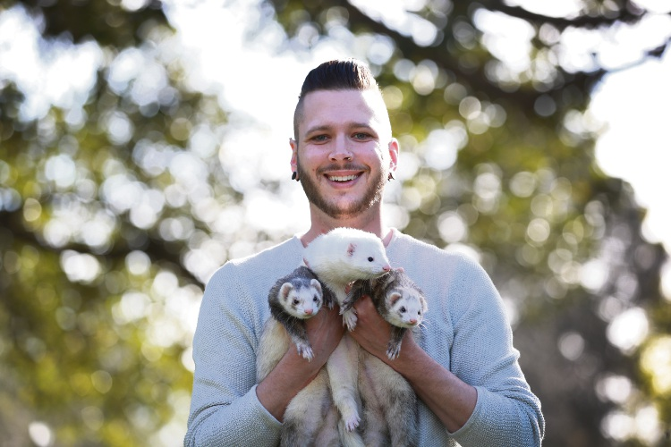 Ant Farrimond with ferret's Dexter, Boo and Taffy is part of the WA Ferret Society which is holding its annual ferret show at Jackadder Lake in Woodlands on September 2. Photo: Andrew Ritchie