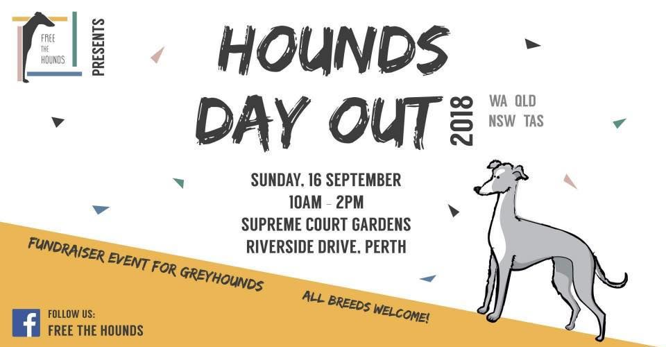 Hounds Day Out