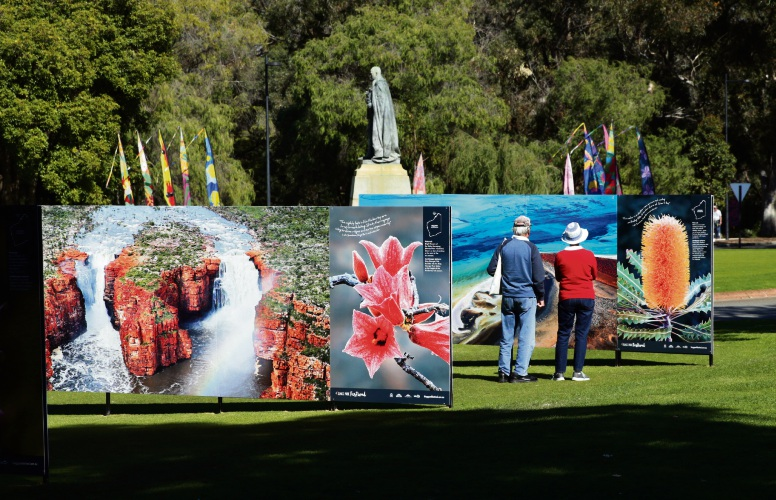 The 55th Kings Park Festival is in full swing