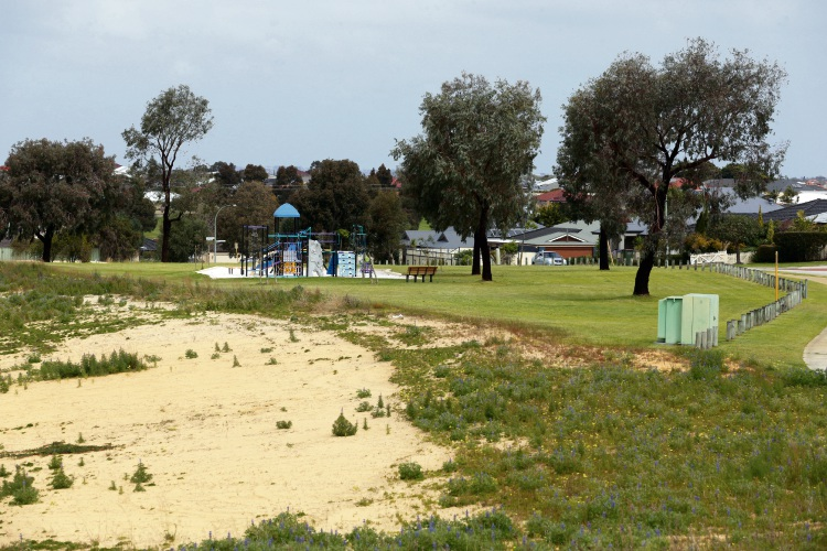 The City of Wanneroo is seeking community input for development of Hinckley Park. Picture: Martin Kennealey d486745