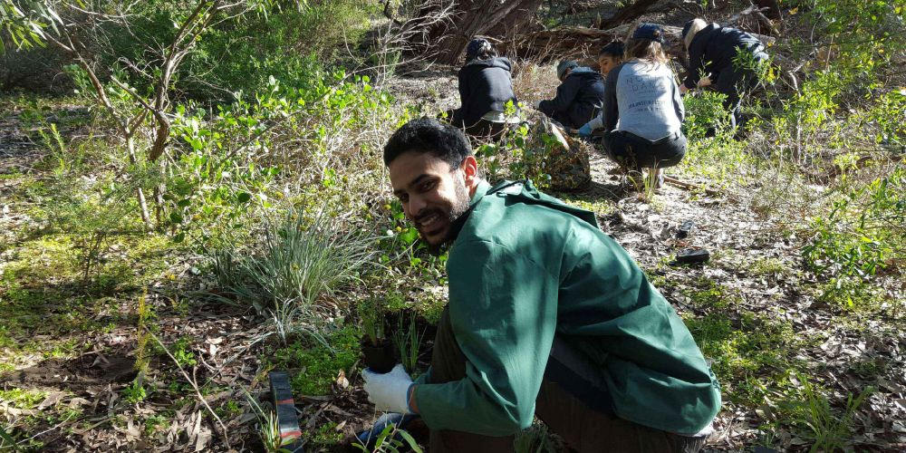 Notre Dame Volunteer Network student volunteer Kamran Syed Ahmed planted at Lake Claremont.