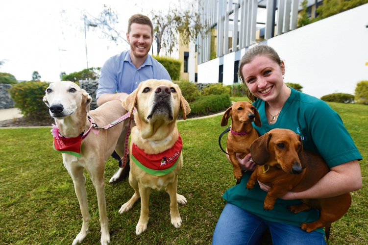 Fiona Stanley Hospital doctors Liam Bibo and Alexandra Richards with some of the therapy dogs. Picture: Jon Hewson.