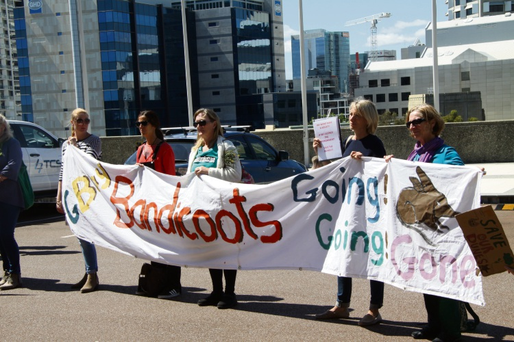 Golden Bay residents protesting at the steps of Parliament House.