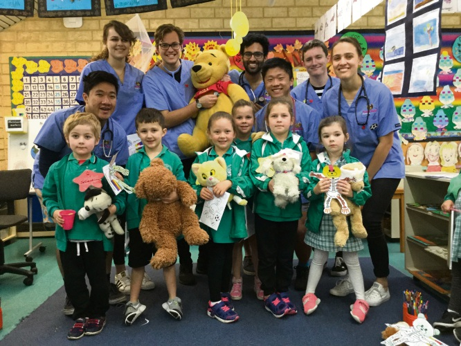 Halls Head Primary School students enjoyed a visit from the Teddy Bear Hospital.