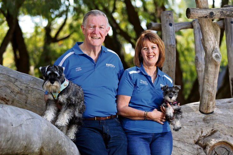 Happy Tails Day a pawfect chance to help the RSPCA