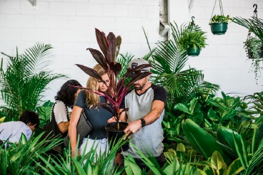 The Jungle Collective's hip indoor plant sale party at The Old Pickle Factory