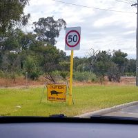 The turtle crossing signs on Progress Drive. Photo: Jojo Sophia Parisse