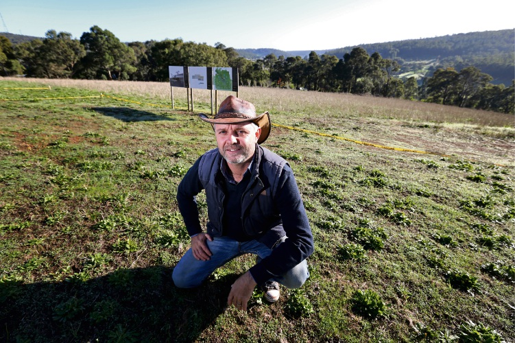 Terry Martin of Carmel wants to build the Bakehouse Distillery and Restaurant as well as the Honey Hive Chalets on his Carmel property overlooking the Carmel Valley. Picture: David Baylis.