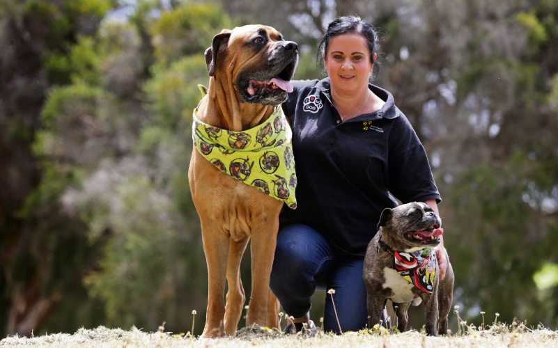 Peta Sampson (The Treat Truck) with Roman and Pepe-Roni. Picture: Martin Kennealey www.communitypix.com.au   d487601