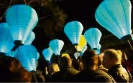 Help light the night on Friday and raise funds for the Leukaemia Foundation.
