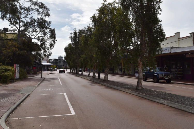 Old Perth Road street trees. Picture: Kristie Lim.