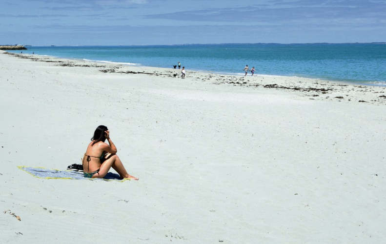 Enjoying the beach. Photo: Bruce Hunt.