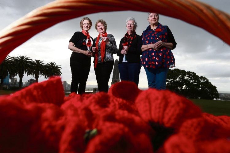 Volunteers Judy Welch, Ann Black, Rita Sillitoe and Lorraine Meeks have knitted poppies to create a red lawn before the Centenary of Armistice Day. Picture: Andrew Ritchie www.communitypix.com.au   d487855
