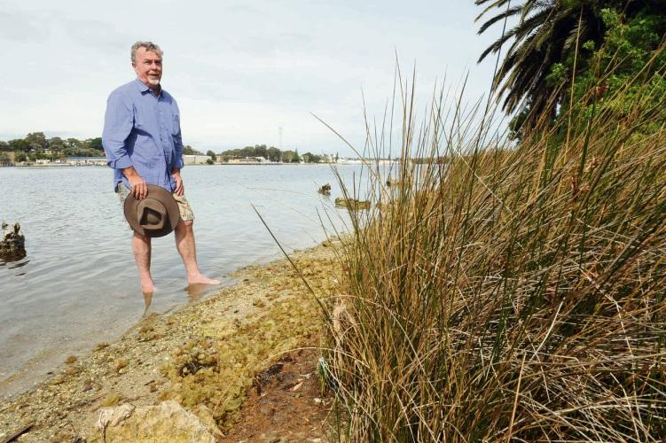 Mayor Brett Pollock wants the endangered salt marsh stands preserved in a management plan for Point Roe on the Swan River.  Picture: Jon Bassett.