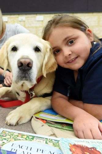 Story Dog Sophie with Attadale Primary School student Libby Brown. Picture: Jon Hewson