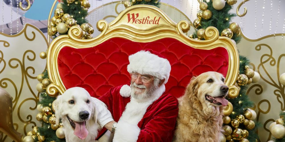 Pet Photography with Santa will be available at Westfield Whitford City from November 12.