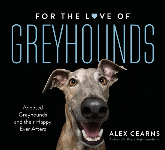 For the Love of Greyhounds, by Alex Cearns.