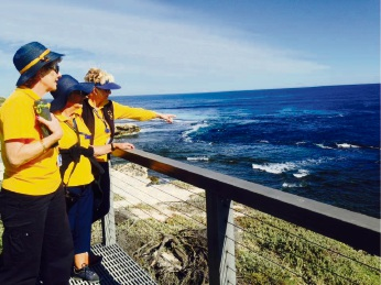 Rottnest Voluntary Guides at Cathedral Rock. Photo: Lyn Williamson.