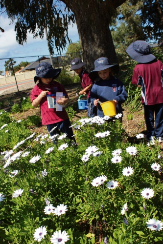Foundation Christian College students enjoy Outdoor Classroom Day