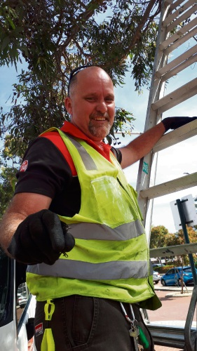 'Fluro hero' to the rescue of willy wagtail in Joondalup