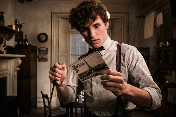 Film review: Fantastic Beasts: The Crimes of Grindelwald