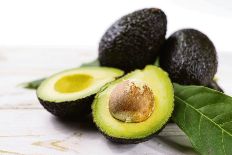 Guide to growing avocados