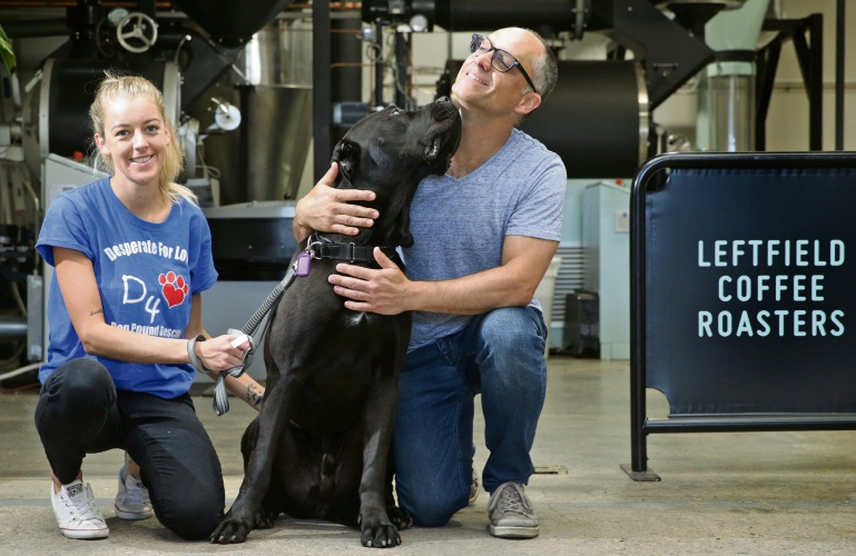 Desperate for Love volunteer Sarah Pettman and Leftfield Coffee Roasters owner Kamran Nowduschani with rescue dog Lenny. Picture: Martin Kennealey www.communitypix.com.au d488730