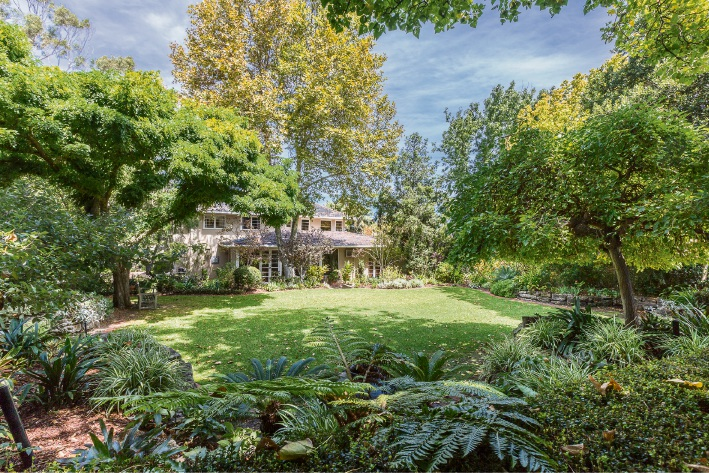 Victoria Park: Rates discount appeal for homes with big trees