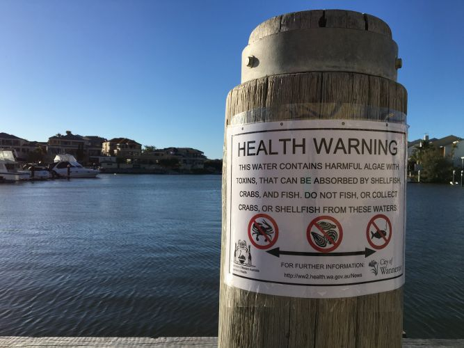 Health Department issues warning for fish, crabs, shellfish from Mindarie Marina