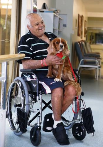 therapy dog   Osborne Park hospital