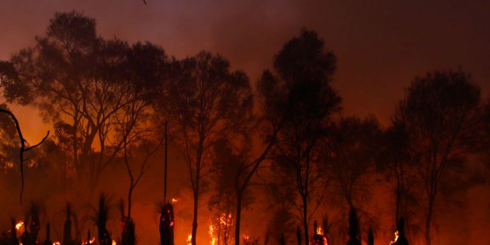 Dozens of fires out of control in Qld