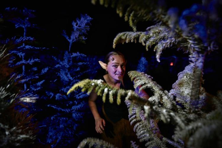 Tristan McInnes (Menora) as Mr Tumnus. Picture: Andrew Ritchie d488995