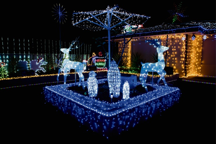 The Christmas Lights display on Heron Close.
