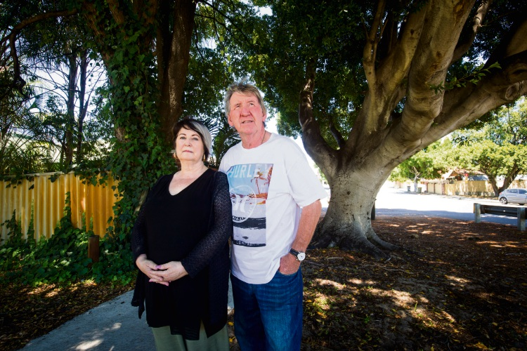 Colette and Peter Smith alongside the large Chinese Banyan tree they say should be saved - even though its root system affects underground pipes on their property. Picture: Matt Jelonek