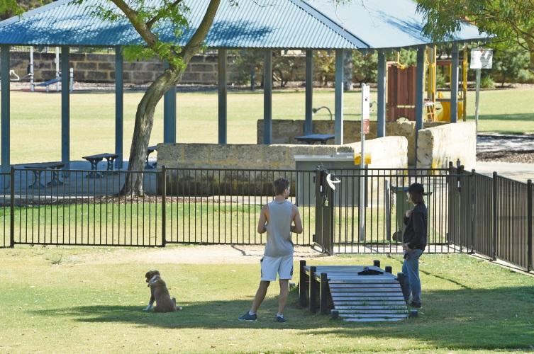 Residents enjoying the Jan Hammond dog park in Success.