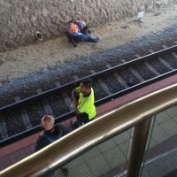 Transit guards make sure the woman is safe after falling from the platform at Warwick station.
