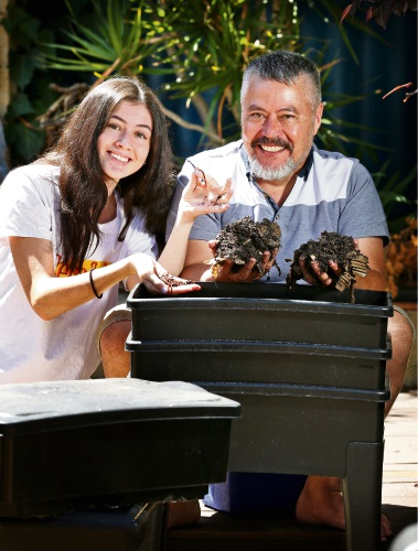 Graeme Poh of Bayswater with his 14 year old daughter Charlotte and their worm farm.  More than two tonnes of food waste has been diverted from landfill in just four weeks thanks to participants in the City of Bayswater's trial Home Composting Program. Delivered in partnership with Environment House, the program helps Bayswater households reduce their organic waste by learning how to compost effectively. Picture: David Baylis www.communitypix.com.au   d490067
