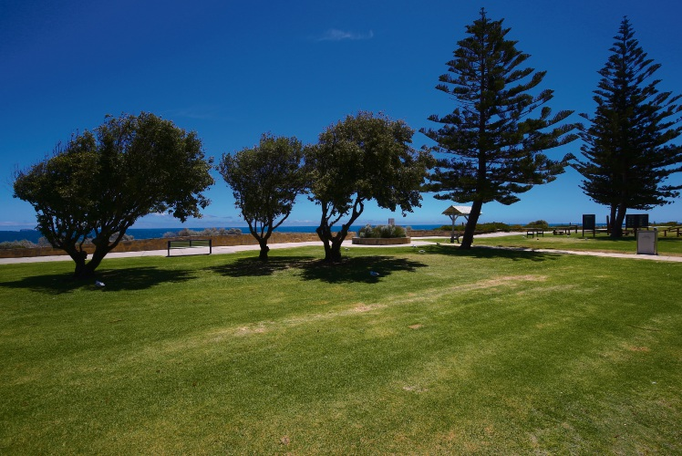 Using fertiliser on lawns near the beach lowered Cottesloe's score. Picture: Will Russell