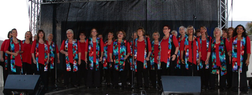 The Indian Blue Chorus performing at the 2018 Kaleidoscope Festival.